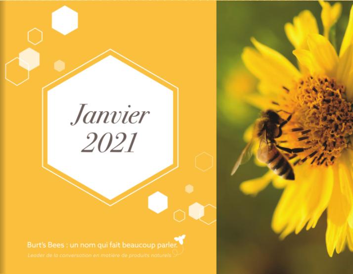 Burt's Bees: un nom qui fait beaucoup parler